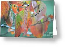 Rainy Days In Autumn Greeting Card