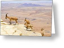 Ramon Crater Negev Israel Greeting Card