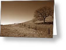 Ranch Road Oak Greeting Card