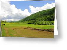 Ranching In The Boundary Greeting Card