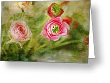 Ranunculus Painterly Greeting Card