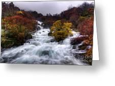 Rapid Waters Greeting Card