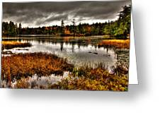 Raquette Lake In Upstate New York Greeting Card