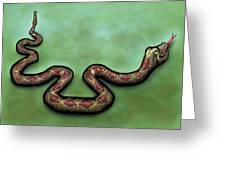 Rattlesnake Greeting Card
