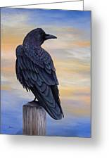 Raven Beauty Greeting Card