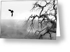 Raven In Grand Canyon Greeting Card