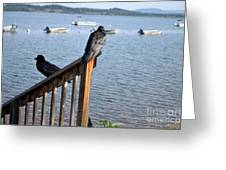 Raven On Watch Greeting Card