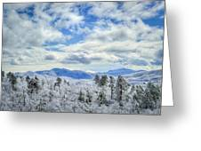 Raven's View In Winter Greeting Card