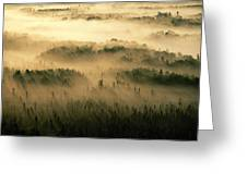 Rays Of Early Morning Sunlight Beam Greeting Card