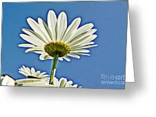 Reach For The Blue Sky Greeting Card