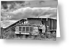 Ready For The Harvest Bw Greeting Card