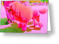 Really Pink Poodle Greeting Card
