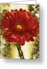 Really Red Posey Greeting Card