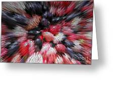 Red And Black Explosion #01 Greeting Card