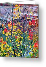 Red And Gold In Quarry At Elephant Rocks State Park Greeting Card