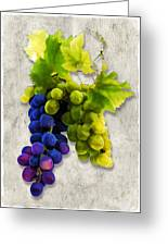 Red And White Grapes Greeting Card