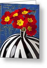 Red And Yellow Primrose Greeting Card