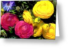 Red And Yellow Ranunculus Flowers Greeting Card
