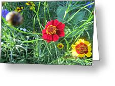 Red And Yellow Tiny Flowers Greeting Card