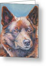 red Australian Kelpie Greeting Card