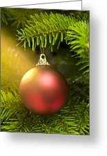 Red Ball In A Real Caucasian Fir Christmas Tree Greeting Card