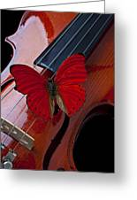 Red Butterfly On Violin Greeting Card