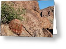 Red Cactus Rock Greeting Card