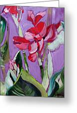 Red Canna Lily Greeting Card by Suzanne Willis