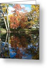 Red Cedar Reflections Greeting Card