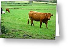Red Cow Greeting Card