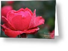 Red Crystal Petals Greeting Card
