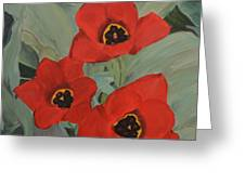 Red Emperor Tulip Study Greeting Card