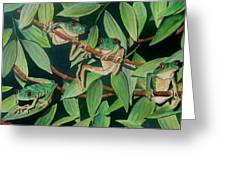 Red Eyed Tree Frogs IIi Greeting Card