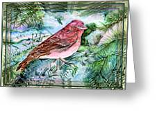 Red Finch Greeting Card by Mindy Newman