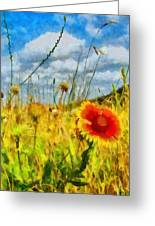 Red Flower In The Field Greeting Card