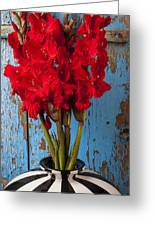 Red Glads Against Blue Wall Greeting Card