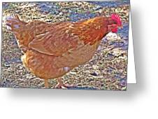 Red Hen Greeting Card