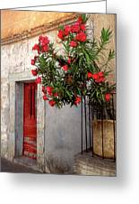 Red In Provence Greeting Card