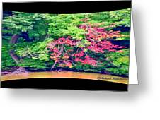 Red Leaves Pano Greeting Card