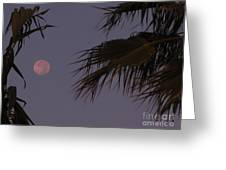 Red Moon Greeting Card