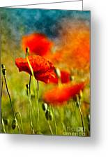 Red Poppy Flowers 01 Greeting Card
