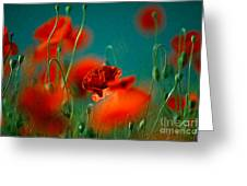 Red Poppy Flowers 05 Greeting Card