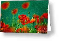 Red Poppy Flowers 07 Greeting Card