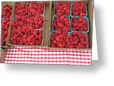Red Raspberries Are Here Greeting Card