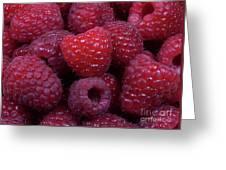 Red Raspberries Greeting Card