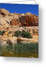 Red Rock Canyon The Tank Greeting Card