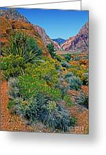 Red Rock Park Spring Flowers Greeting Card