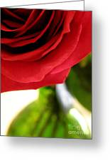 Red Rose In Glass Vase Greeting Card
