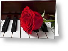 Red Rose On Piano Greeting Card