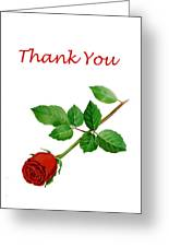 Red Rose Thank You Card Greeting Card